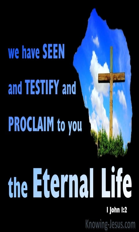 1 John 1:2 We Have Seen Testify And Proclaim Eternal Life (blue)