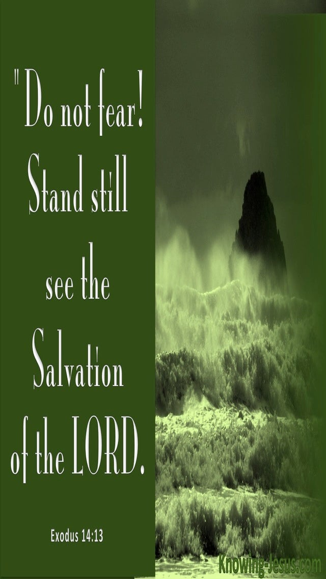 Exodus 14:13 Stand Still And See The Salvation Of God (green)
