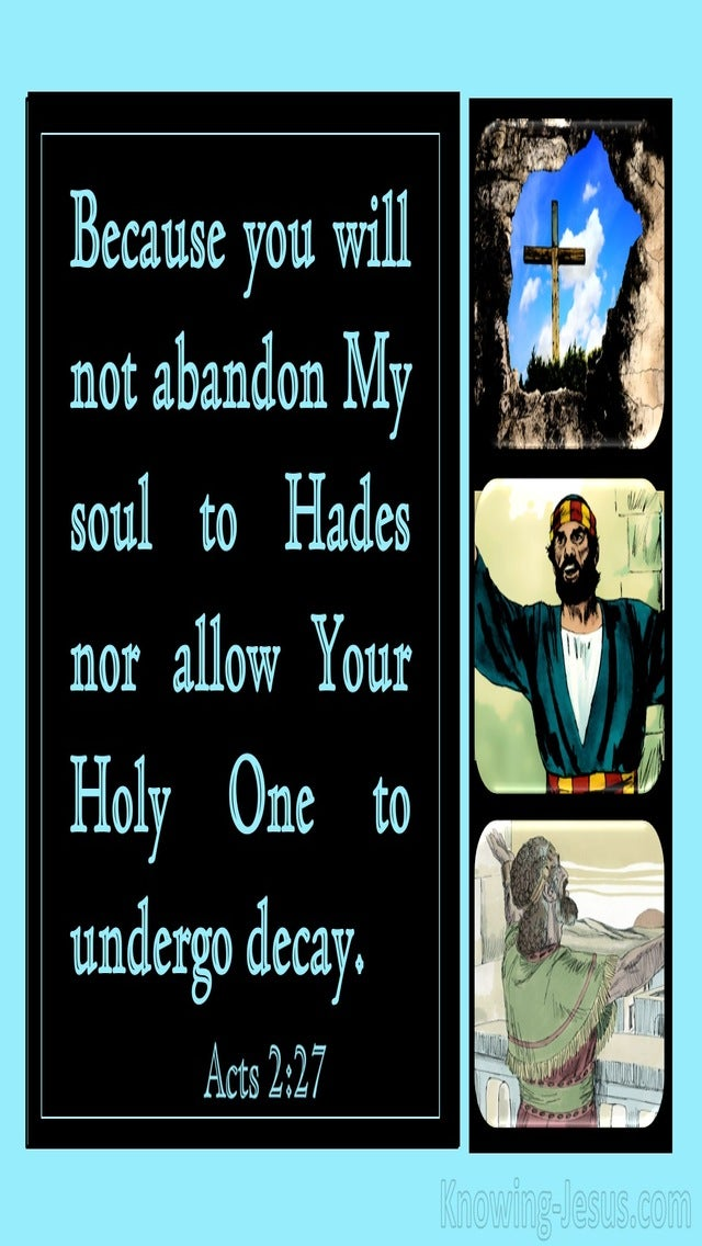 Acts 2:27 You Will Not Abandon My Soul To Hades (aqua)