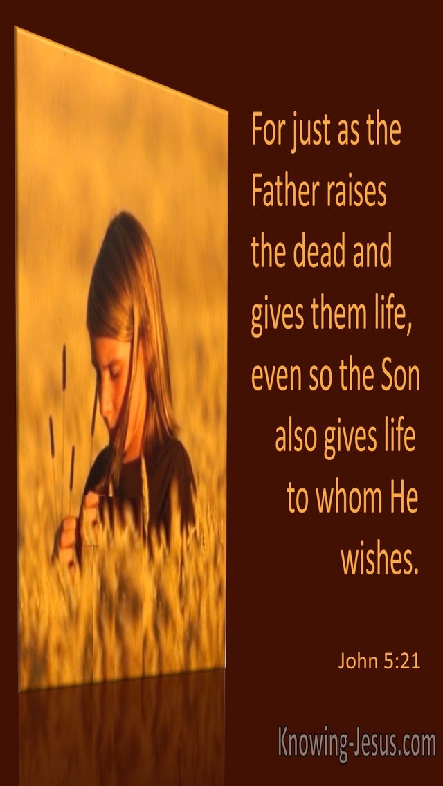 John 5:21 The Son Gives Life To Whom He Wishes (orange)