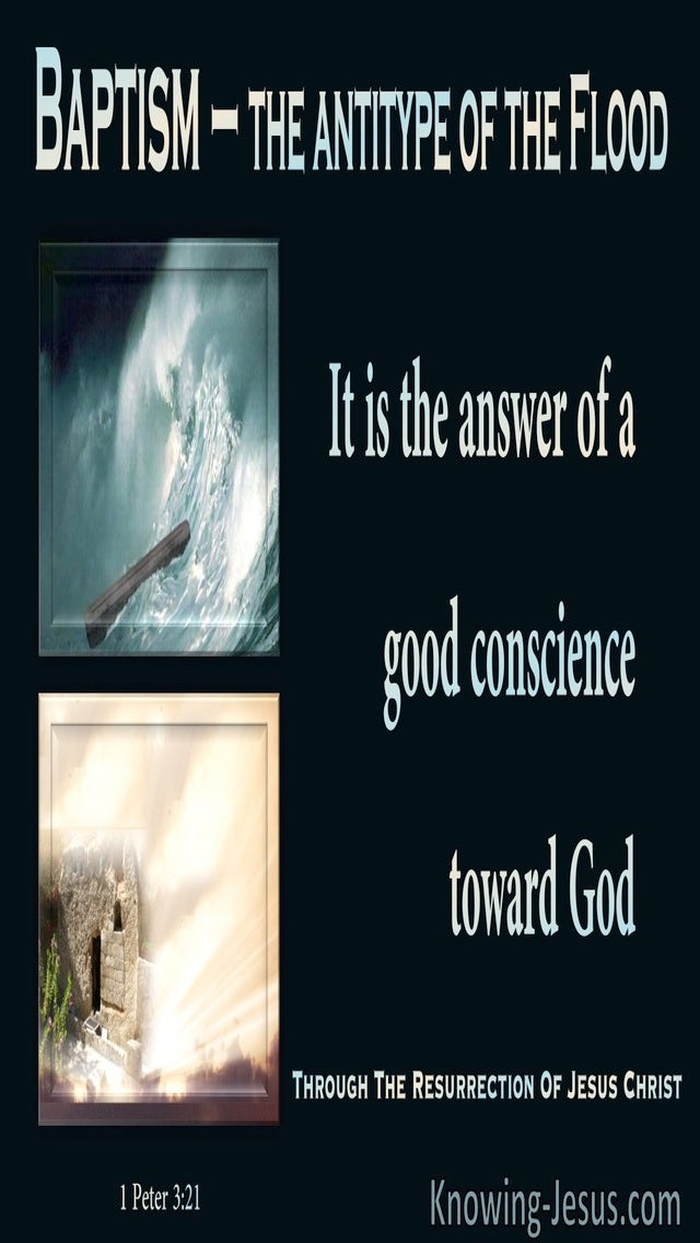 1 Peter 3:21 The A Good Conscience Towards God (beige)