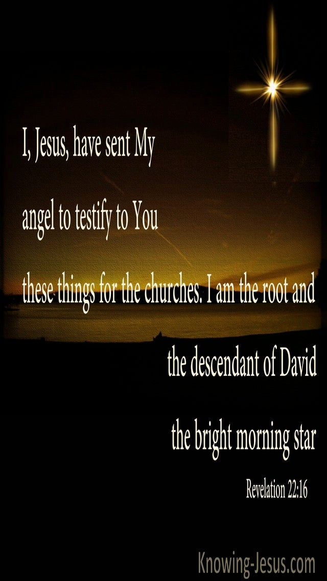 Revelation 22:16 Root And Stem Of David And  Bright Morning Star (black)
