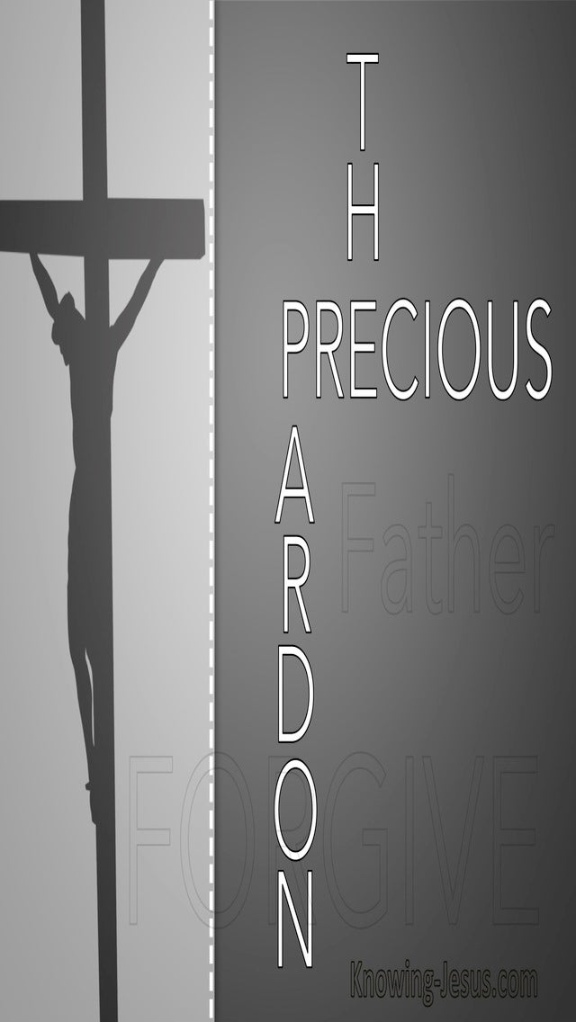 The Precious Pardon (devotional)01-03 (gray)