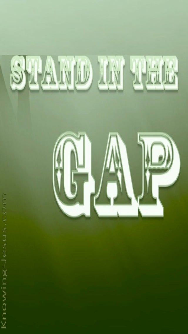 Stand In The Gap (devotional) - (sage)