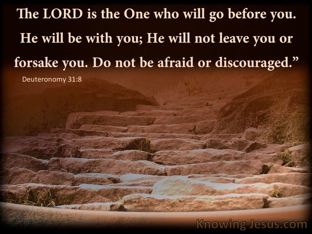Deuteronomy 31:8 The Lord Go Before You (brown)