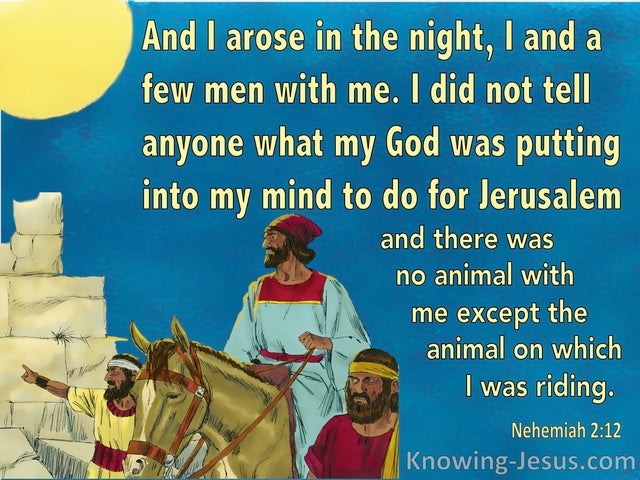 Nehemiah 2:12 I Arose In The Night, I And A Few Men With Me (aqua)