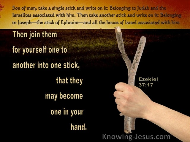 Ezekiel 37:17 Then Join Them For Yourself One To Another Into One Stick (black)