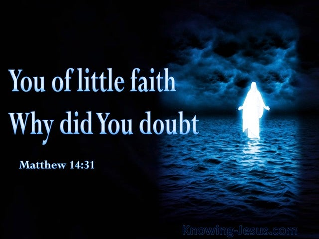 Matthew 14:31 Your Of Little Faith Why Did You Doubt (blue)