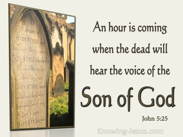 John 5:25 All Those Who Hear Will Live (brown)