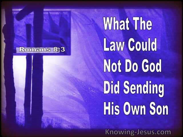 Romans 8:3 What The Law Could Not Do God Did Sending His Own Son (purple)