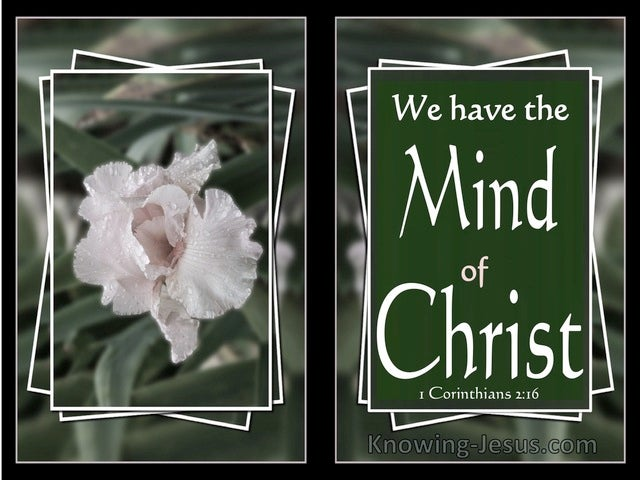 1 Corinthians 2:16 We Have The Mind Of Christ (white)
