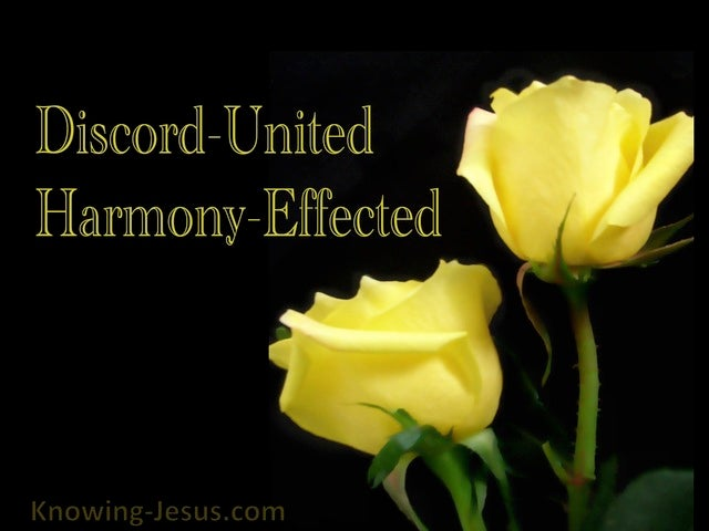 Discord United - Harmony Effected (devotional) (black)