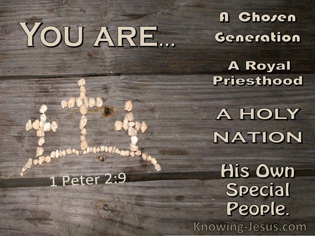 1 Peter 2:9 You Are A Chosen Generation, A Holy Nation, A Royal Priesthood (windows)10:28