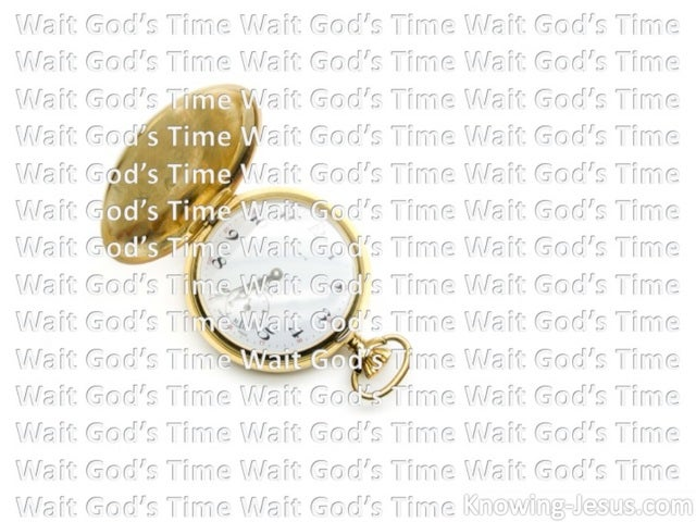 Wait God's Time (devotional) (white)