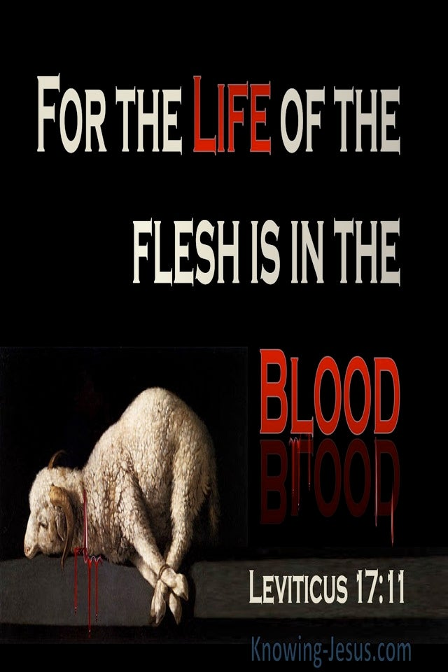 Leviticus 17:11 The Life Of The Flesh Is In The Blood (beige)