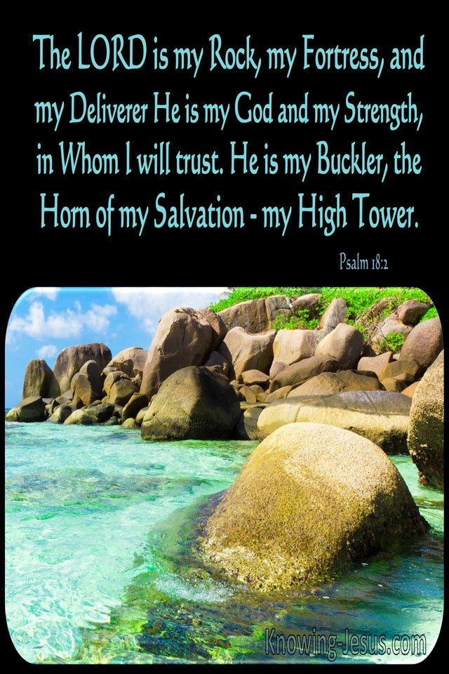 Psalm 18:2 The Lord Is My Rock (black)