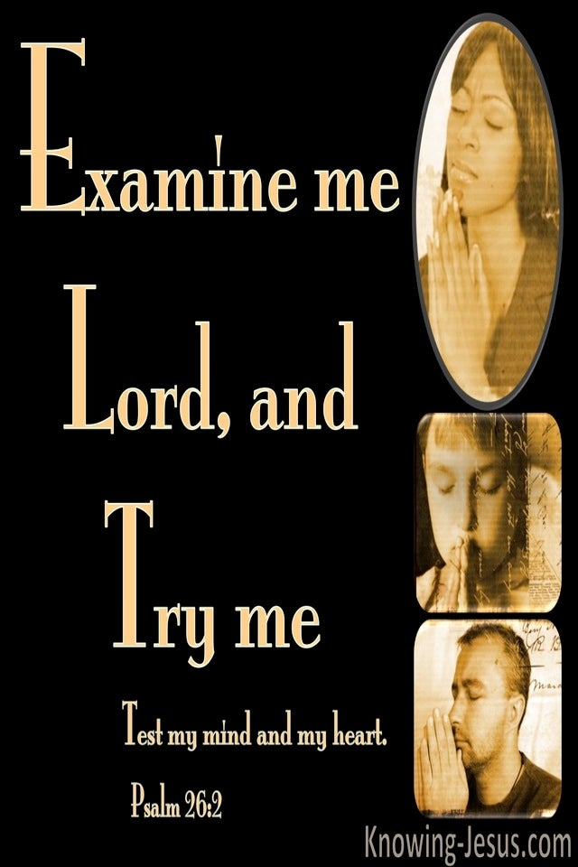 Psalm 26:2 Examine Me, Try Me, Test My Heart And Mind (orange)