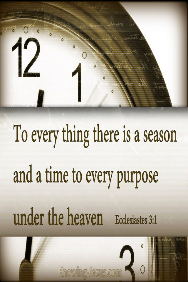 Ecclesiastes 3:1 To Everything There Is A Season (brown)