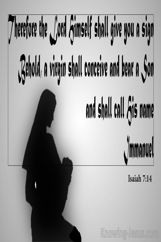 Isaiah 7:14 Behold A Virgin Shall Conceive (gray)