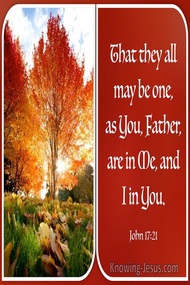 John 17:21 That They All May Be One (windows)01:11