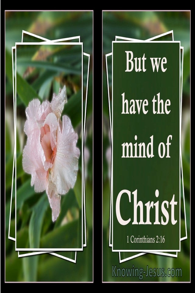 1 Corinthians 2:16 We Have The Mind Of Christ (green)
