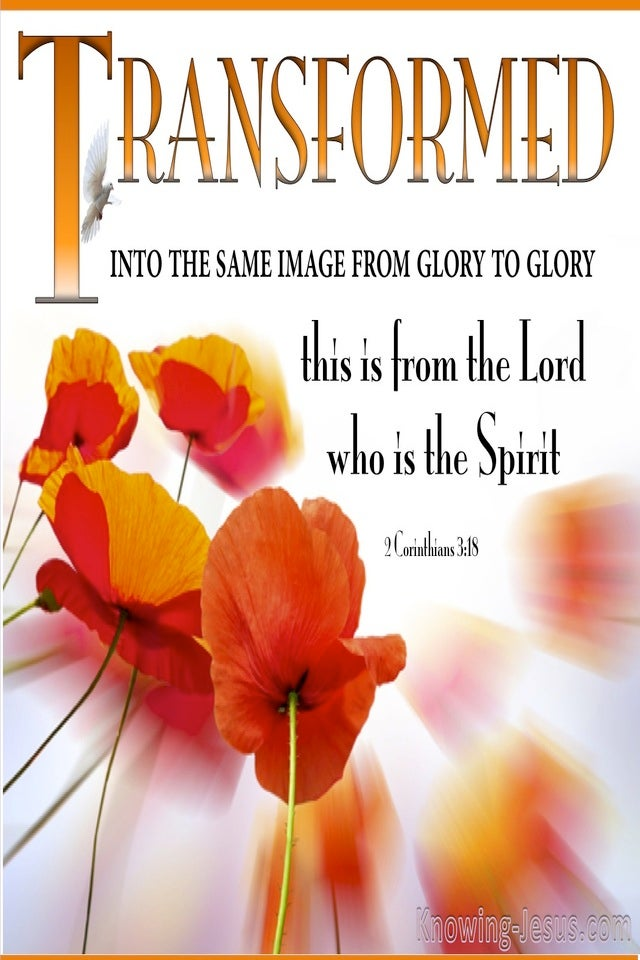 2 Corinthians 3:18 Transformed From Glory To Glory (orange)