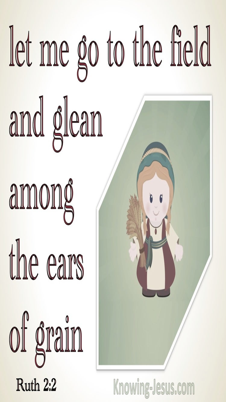 Ruth 2:2 Let Me Go To The Field And Glean Among The Ears Of Grain (sage)