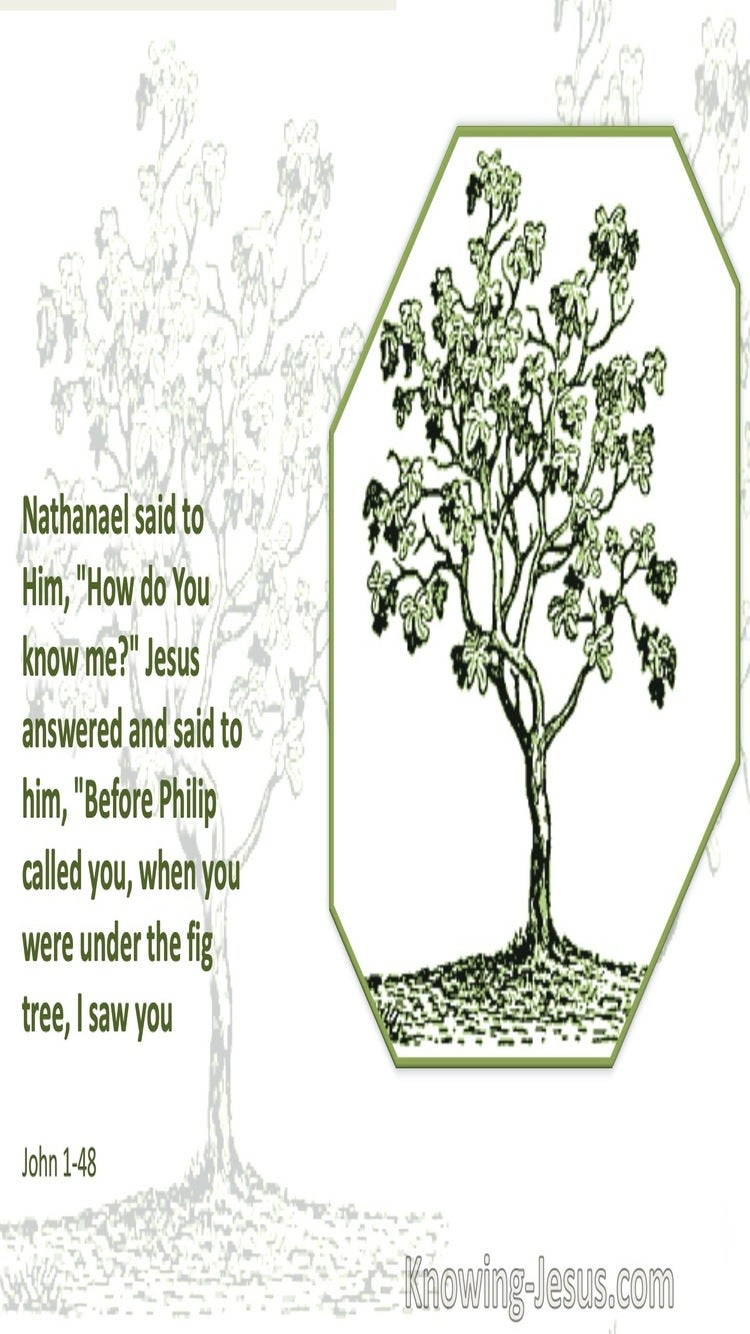 John 1:48 Before Philip Called You I Saw You (white)