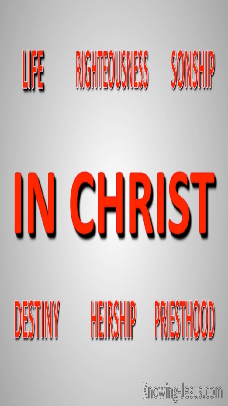 Our Share in Christ (devotional) (red)