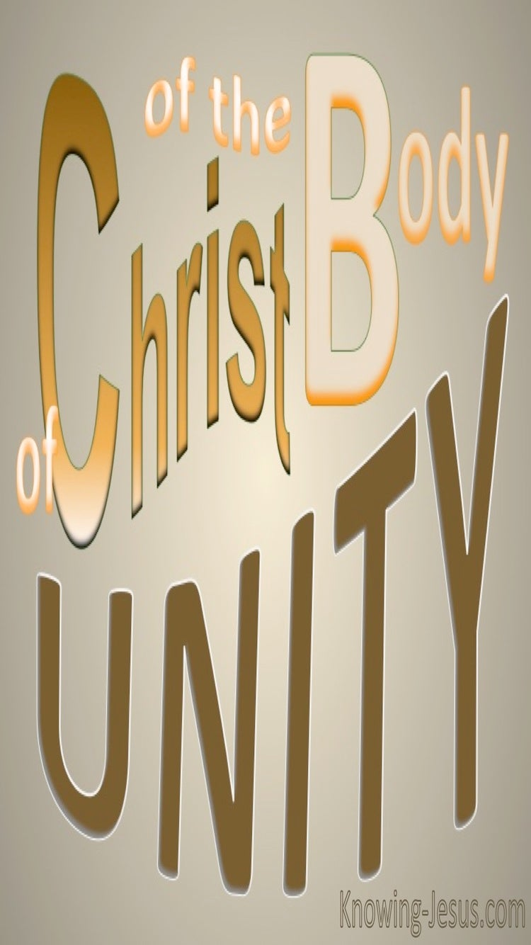 Unity Of The Body Of Christ (brown) Ephesians 4-12