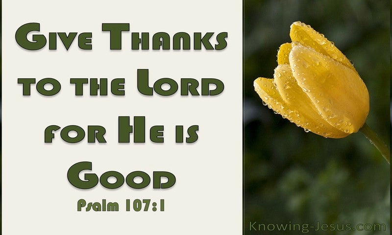 Psalm 107:1 Give Thanks To The Lord (yellow)