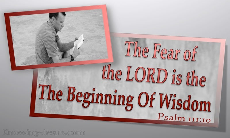 Psalm 111:10 The Fear Of The Lord Is The Beginning Of Wisdom (gray)