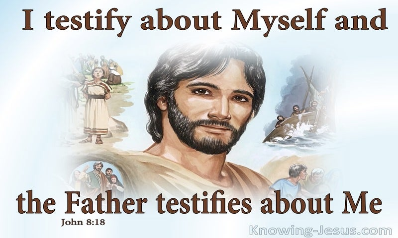 John 8:18 Jesus Testifies About Himself (brown)