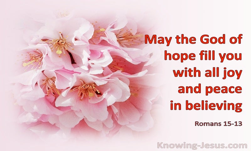 Romans 15:13 May The God Of Hope Fill You With All Joy And Peace In Believing (pink)
