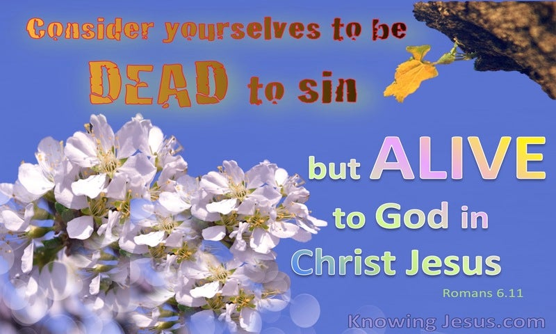 Romans 6:11 Dead To Sin Alive To God (blue)