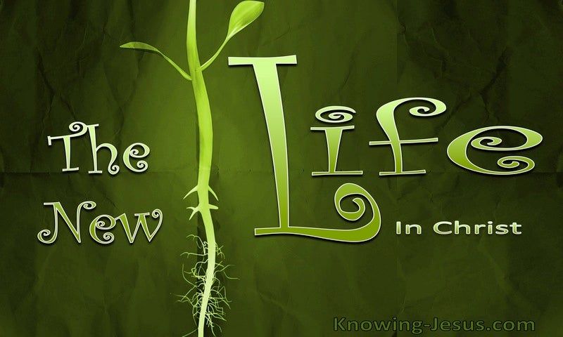 Romans 7:6 Serving In Newness Of The Spirit And Not In Oldness Of The Letter (green) The New Life In Christ (green)