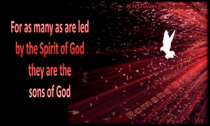 Romans 8:14 Led By The Spirit (red)