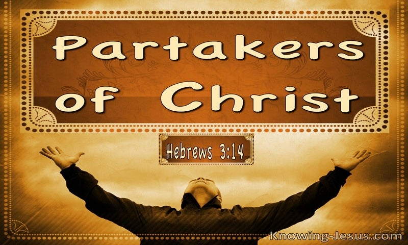 Hebrews 3:14 Partakers Of Christ (brown)