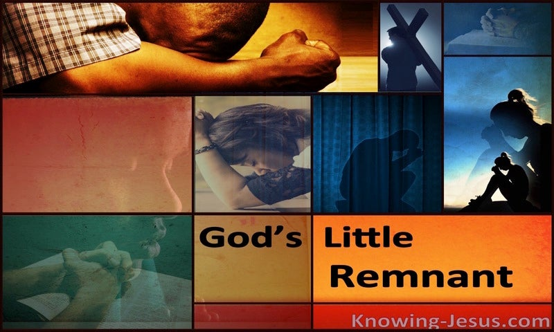 God's Little Remnant (devotional) (brown)