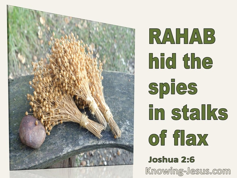 Joshua 2:6 Rahab His The Spies In The Stalks Of Flax (green)