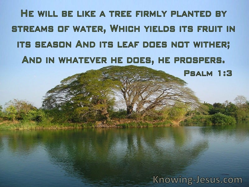 Psalm 1:3 He Will Be Like A Tree Planted By Streams Of Water (blue)