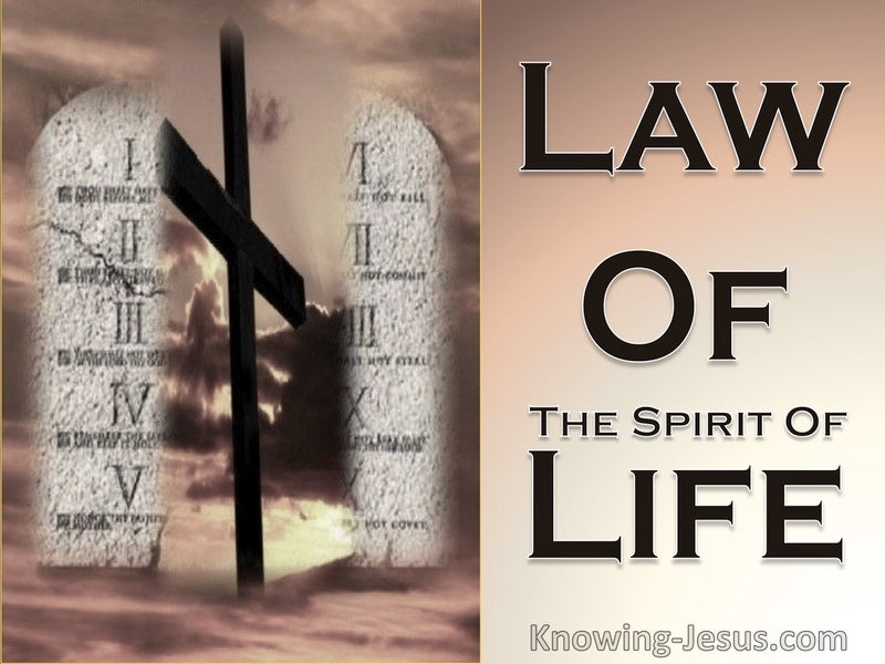 Romans 8:2 The Law Of The Spirit Of Life (brown)