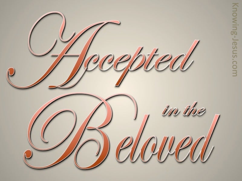Mission Accepted (devotional) (beige) - Ephesians 1-6