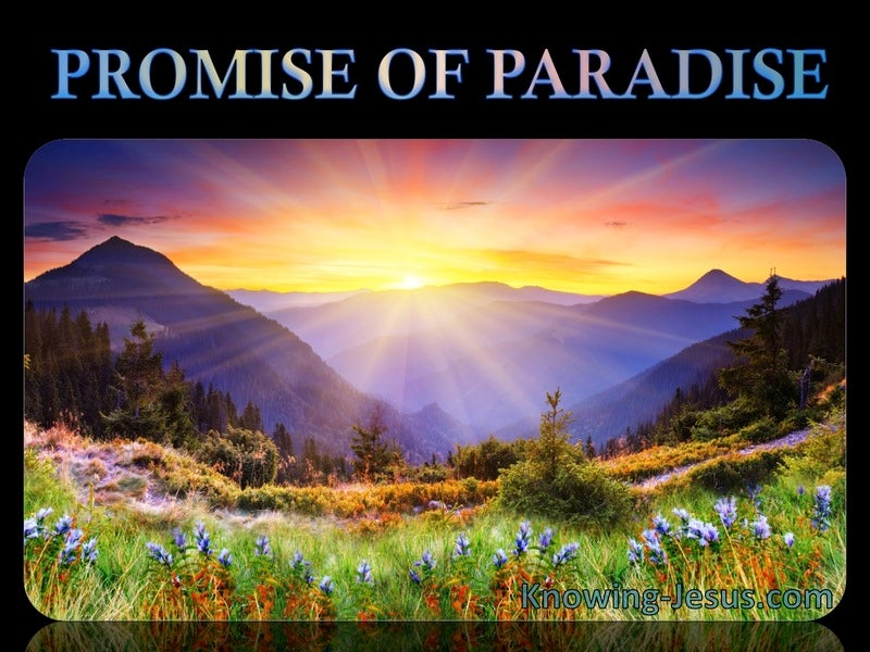 Luke 23:43 Promise of Paradise (devotional)01:04 (purple)