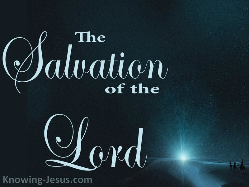 The Salvation Of The Lord  (devotional) (navy)