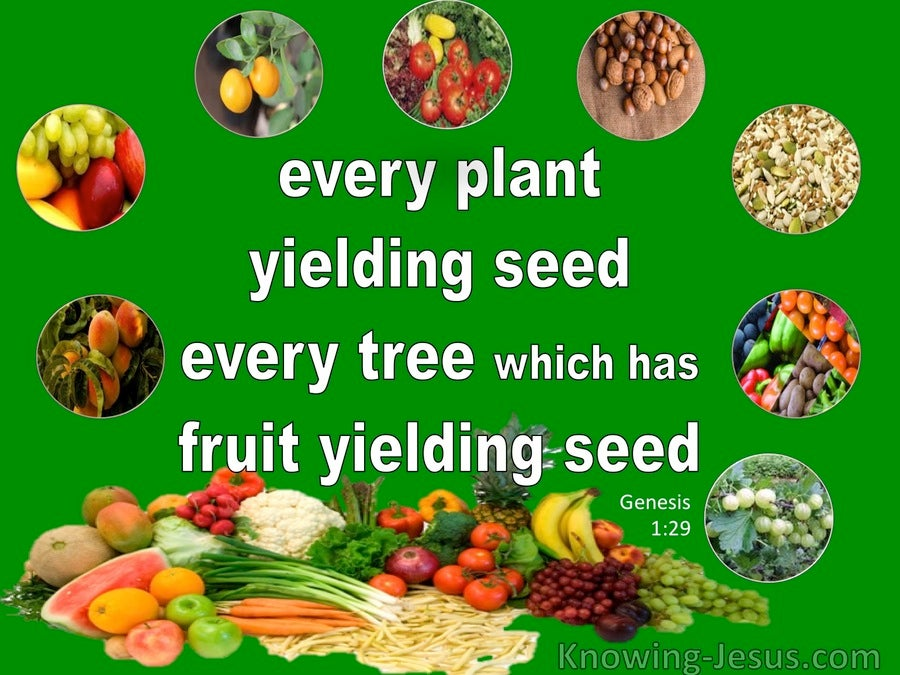 Genesis 1 29 Every Plant Tree And Fruit Yielding Seed Green