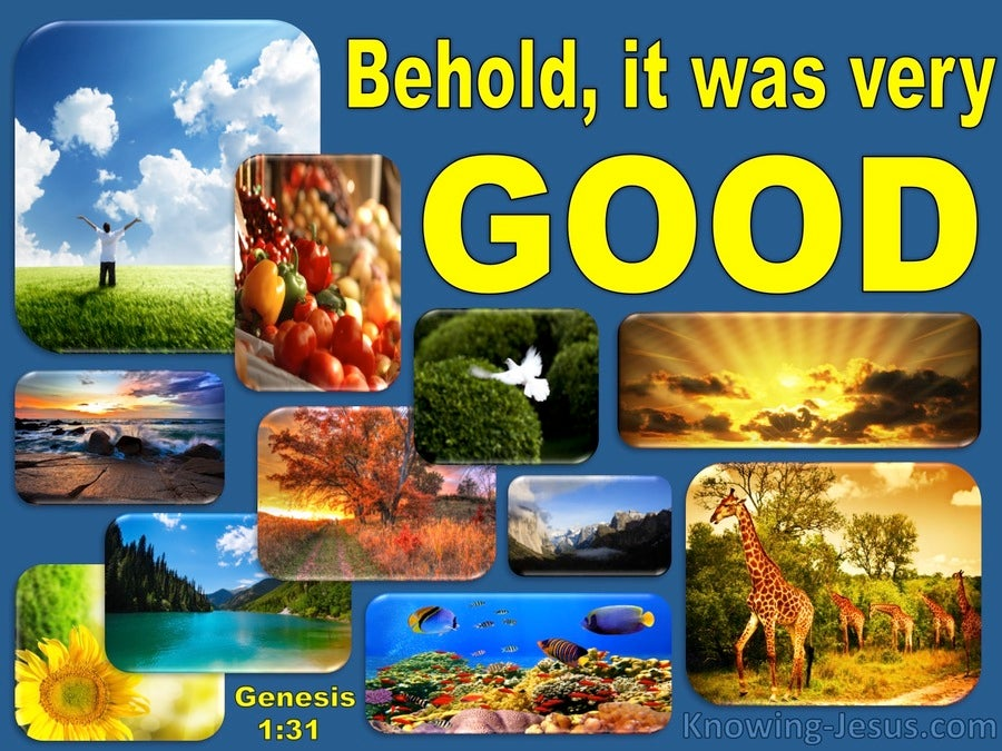 Genesis 1:31 God Saw All That He Made And It Was Very Good (yellow)