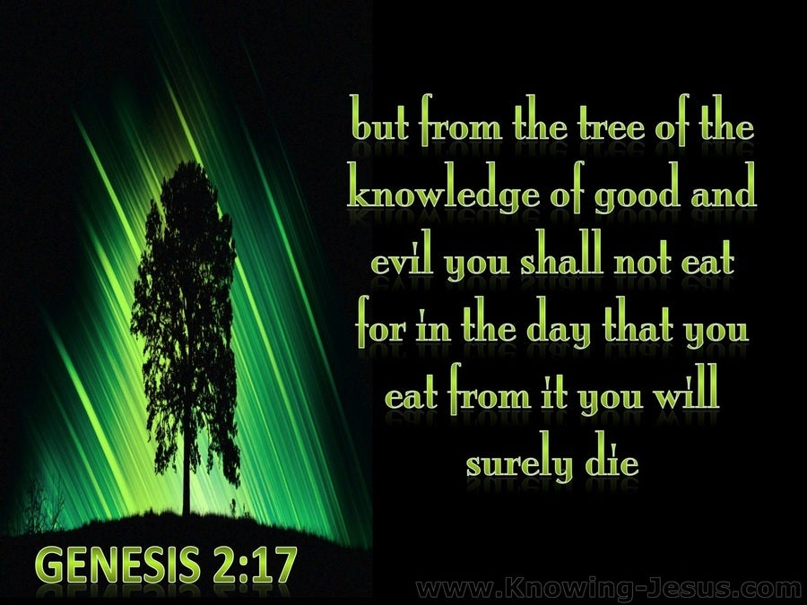 Genesis 2:17 Tree Of Knowledge Of Good And Evil (green)