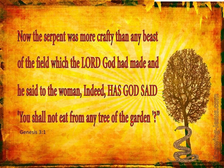 Genesis 3 1 Has God Said Orange