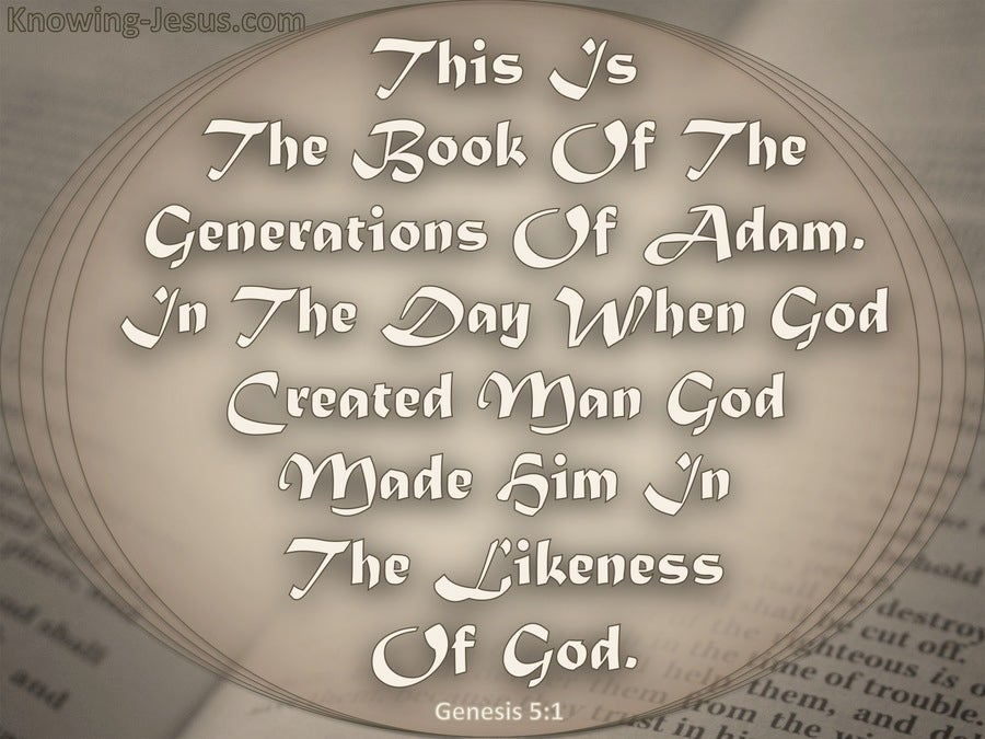 Genesis 5:1 The Generations Of Adam (gray)